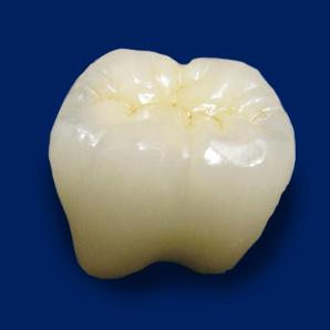 フルジルコニアCr奥歯